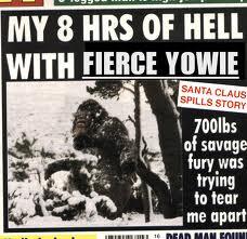 Yowie attacks