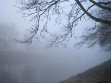foggy riverbank