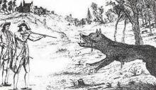cryptid werewolf